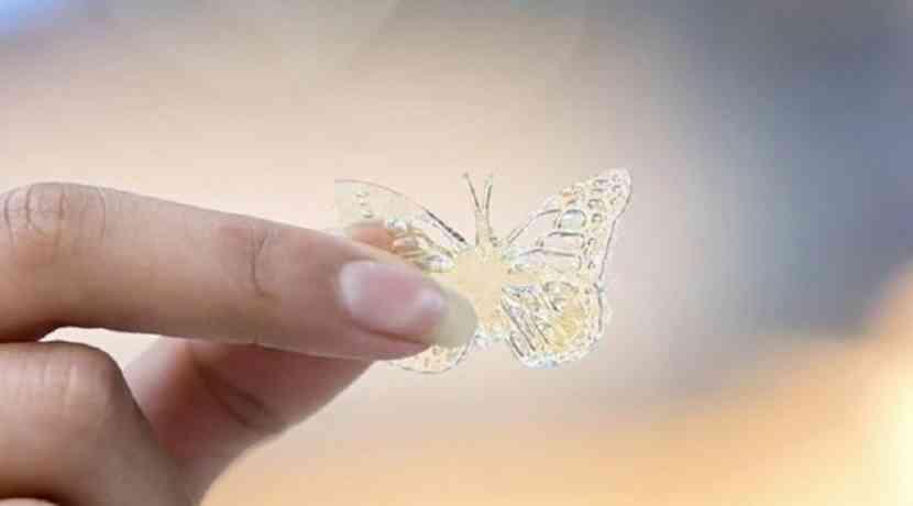 Schmetterling aus Frittierfett