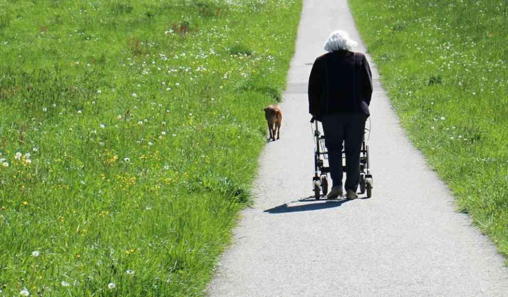 Gedächtnisverlust Im Alter
